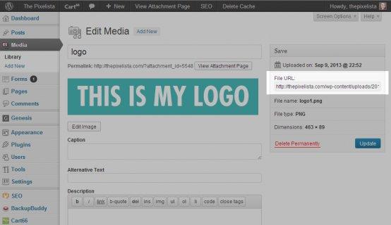 Media-upload-file-url