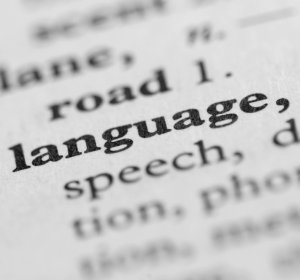 Article semantics in second language acquisition