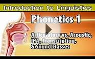 [Introduction to Linguistics] Phonetics and Basics of