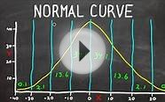 Normal Curve - Bell Curve - Standard Deviation - What Does